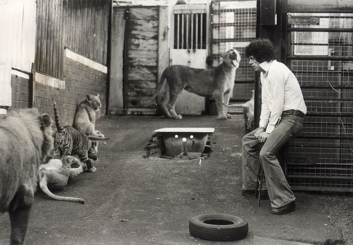 Lew Foley kept a menagerie of big cats behind his home in Cradley Heath