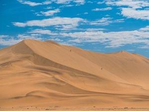 Dune 7 in the Namib Desert