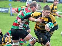 Rugby: Stafford promotion hopes rise