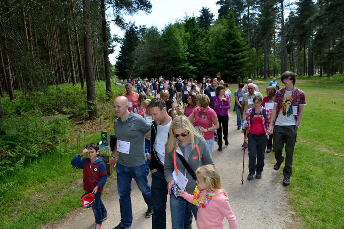 Charity walkers on Cannock Chase