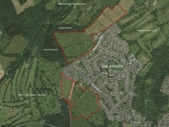 Campaign launched against green belt homes plan near Baggeridge Country Park