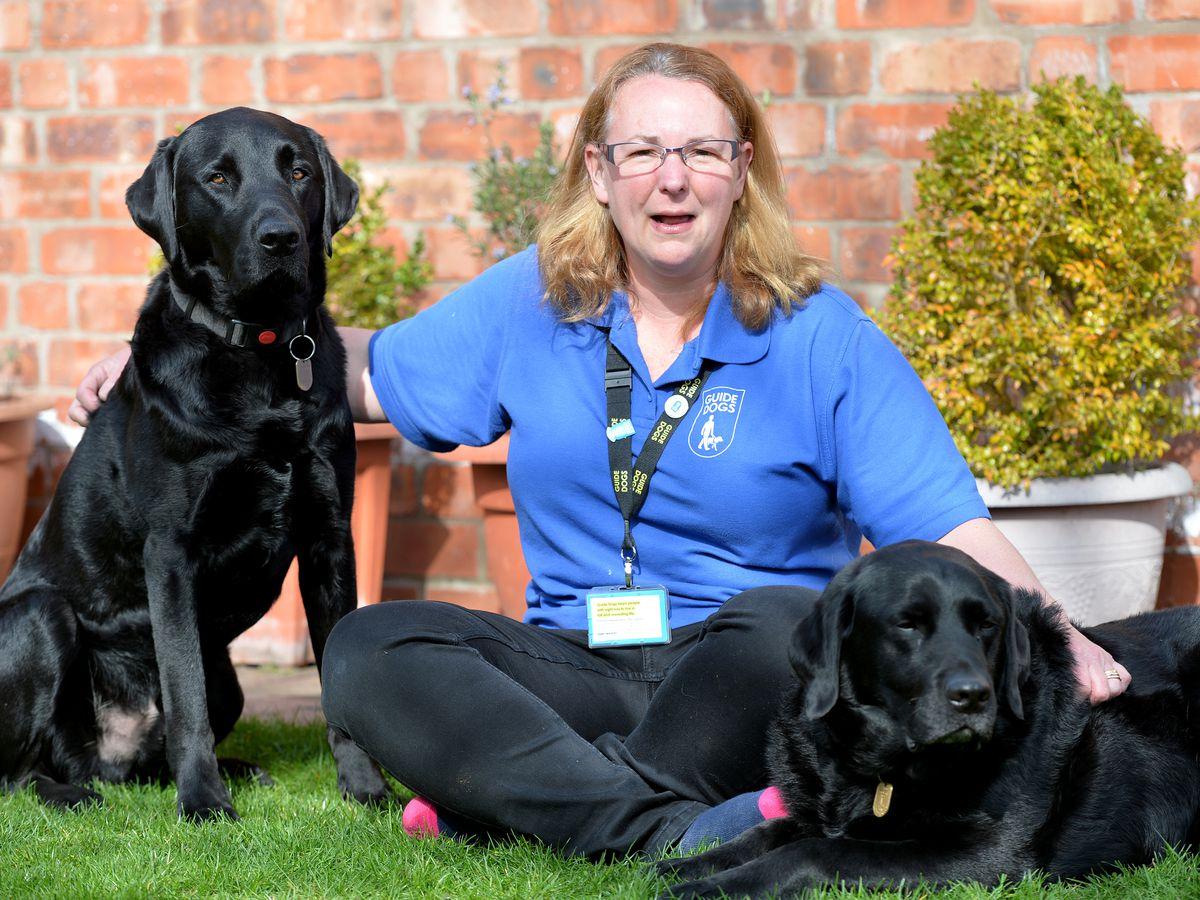 Alison Banham with George and Elmo