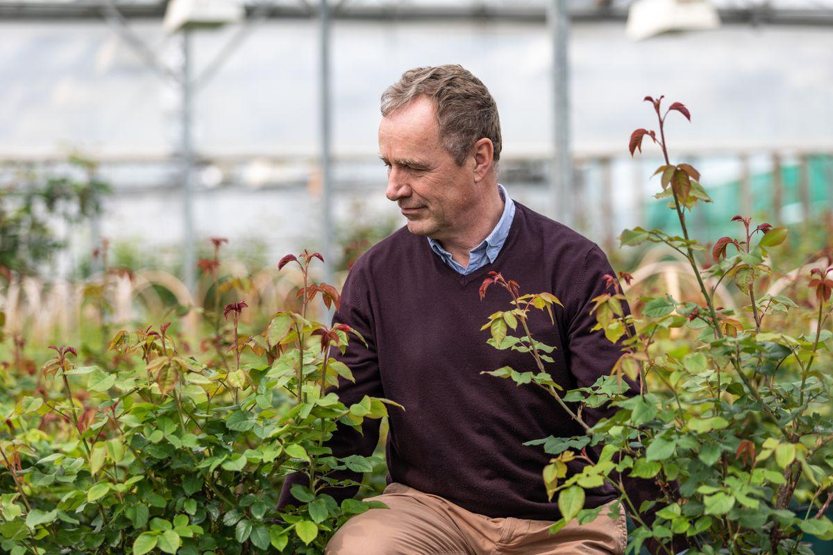 David Austin's son David Jr with the new rose varieties