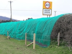 The great bird nets controversy as thousands sign petition