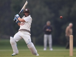 Somerset make Surrey pay for asking them to bat first