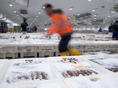 Brexit brings 'catastrophic' £34m bill for Scotland's fishing sector