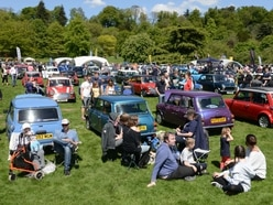 GALLERY: Mini day revs up crowd at Himley Hall