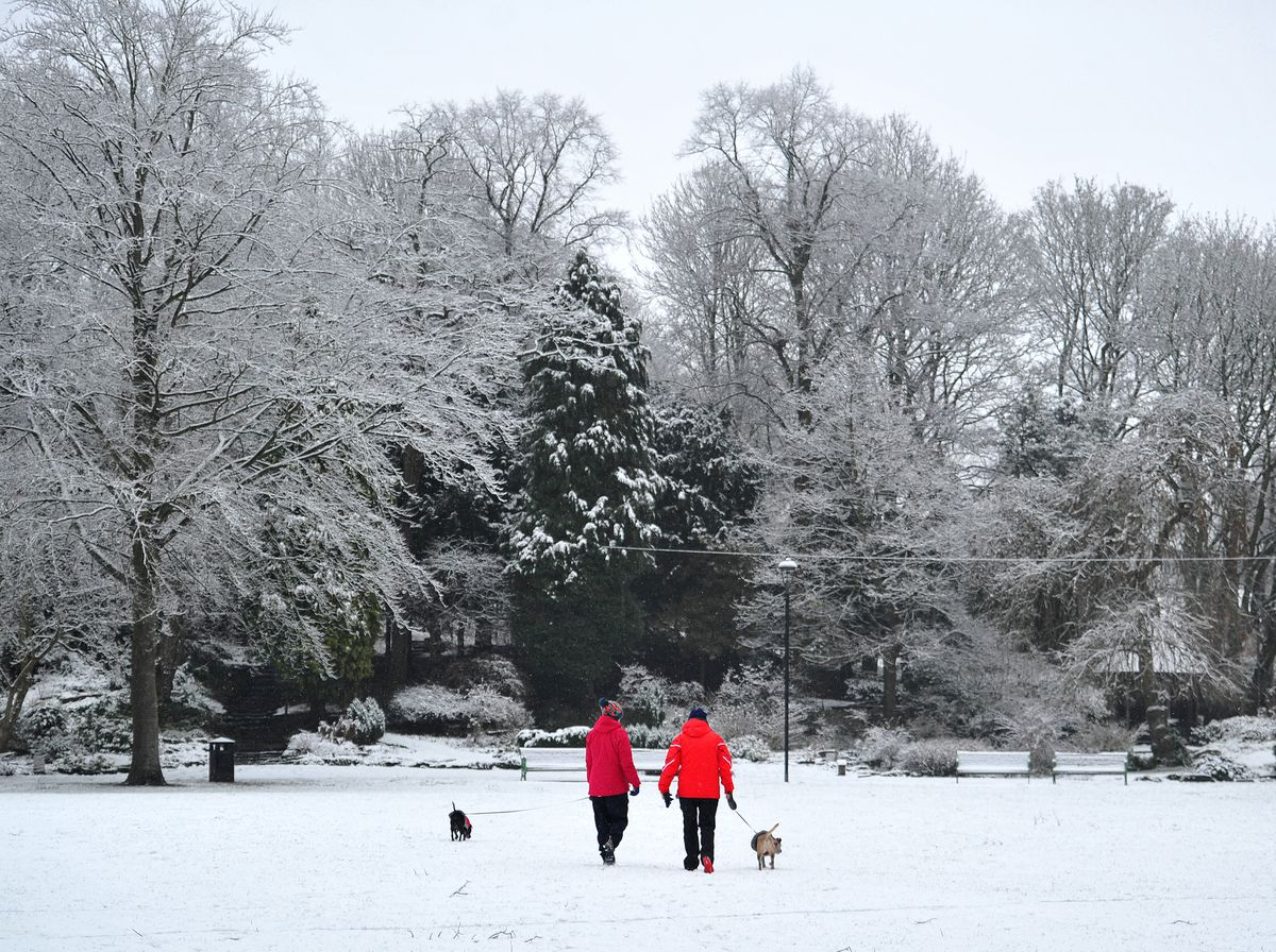 Snow in Walsall Arboretum on Monday morning