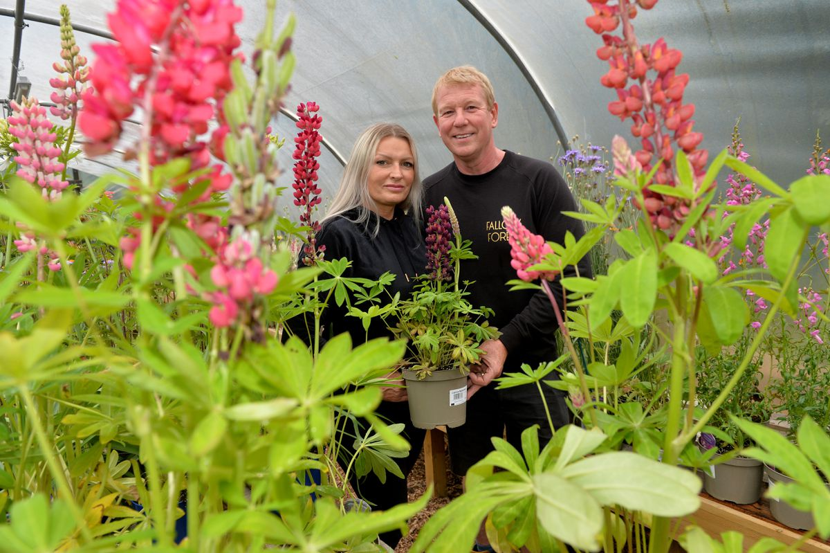 Owners of Fallow Forest, Mark and Andrea O'Neill