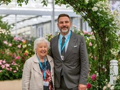 Milestone gold for Shropshire's David Austin Roses
