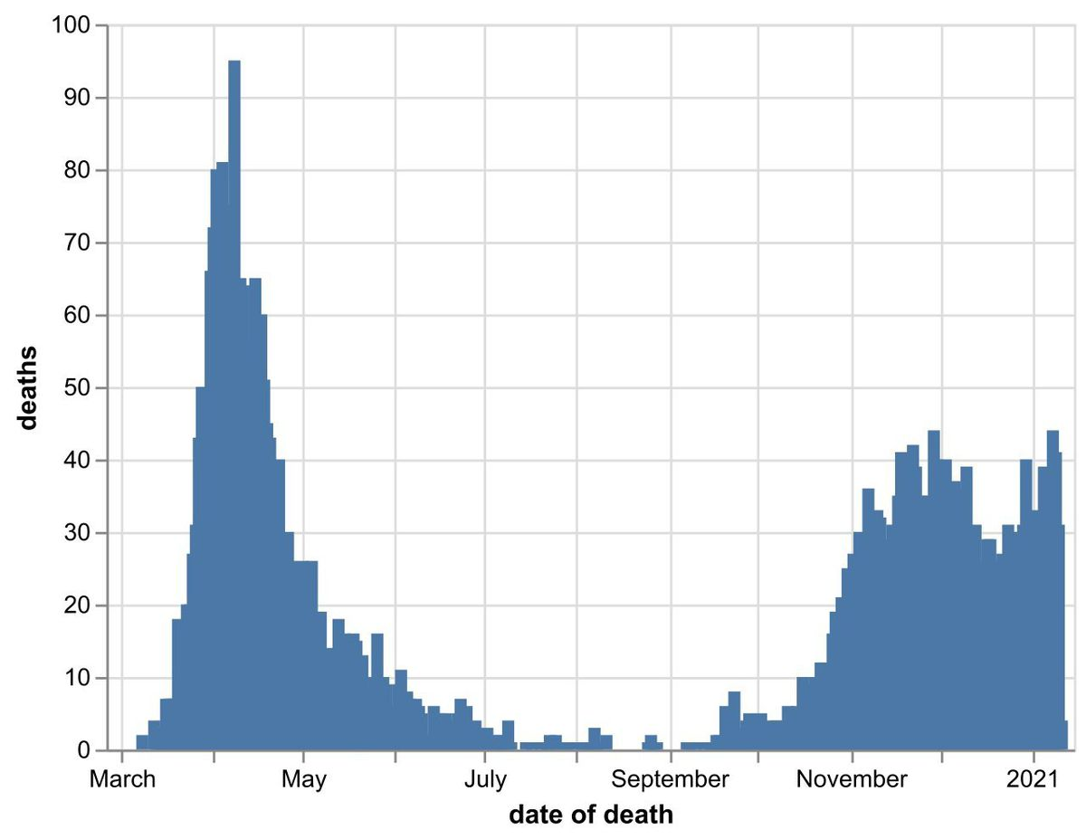The daily number of coronavirus deaths at Black Country, Birmingham and Staffordshire hospitals as of January 12. By date of death, not date death was announced. Data: NHS England.