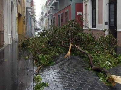 Hurricane Maria destroys hundreds of homes and triggers flooding in Puerto Rico
