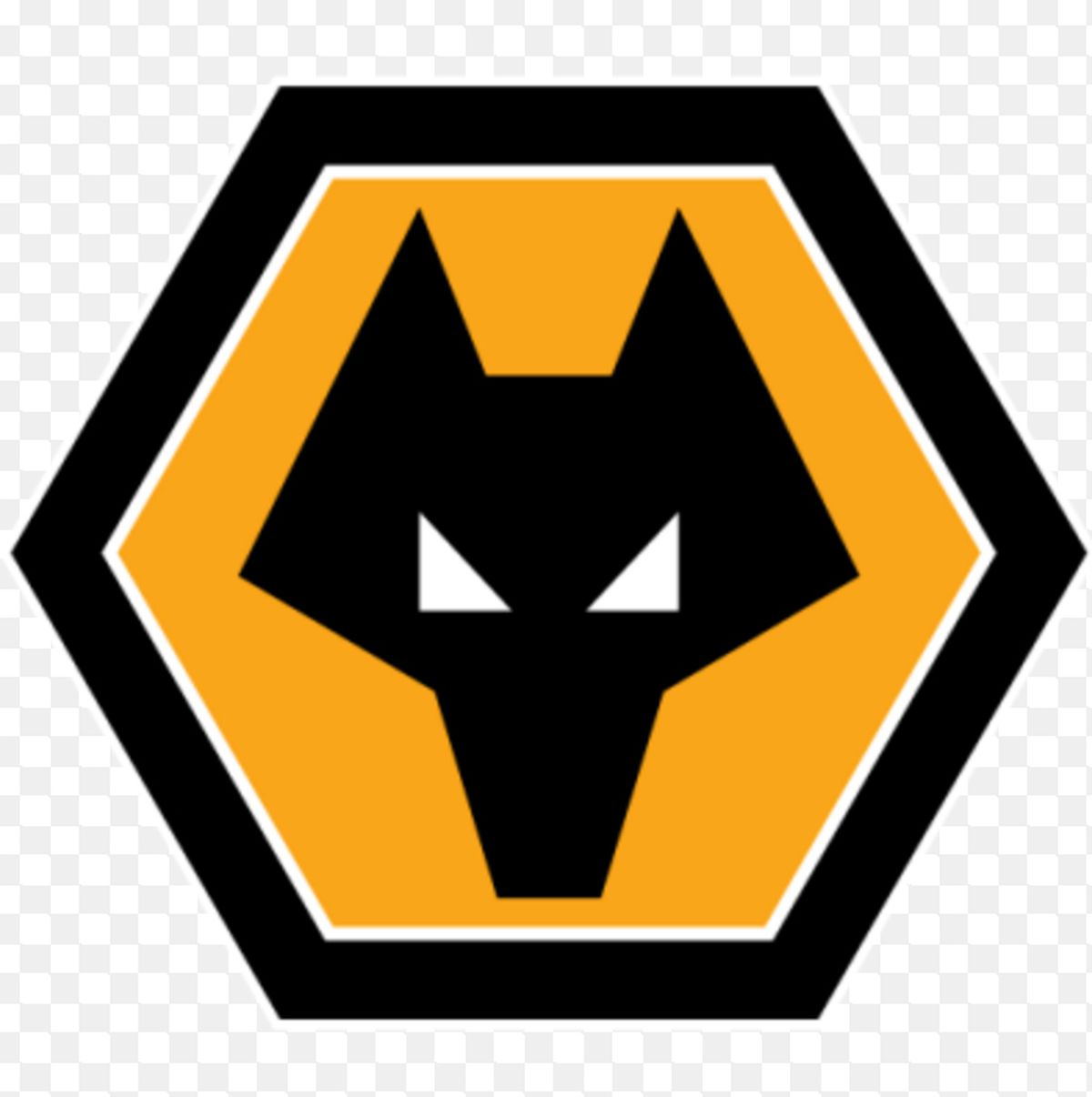 The Wolves logo