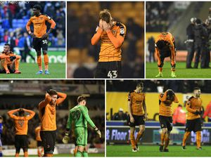 Wolves relegation battle: How many points do Paul Lambert's men need to survive?