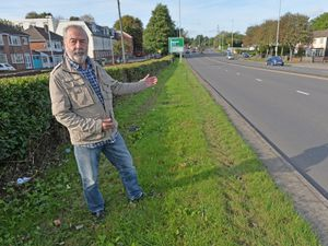 Keith Gibson wants to urge the council to put trees up in the right place along Birmingham New Road