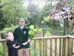Close encounter for giraffe fan Ruby