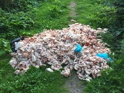 Raw meat dumped on Wombourne footpath