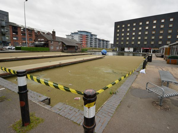 The canal area is covered in a fine layer of algae meaning some people are not aware it is water