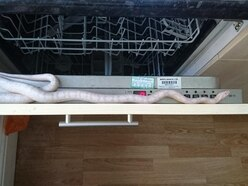 This snake escaped from a box of cornflakes and slithered into a dishwasher