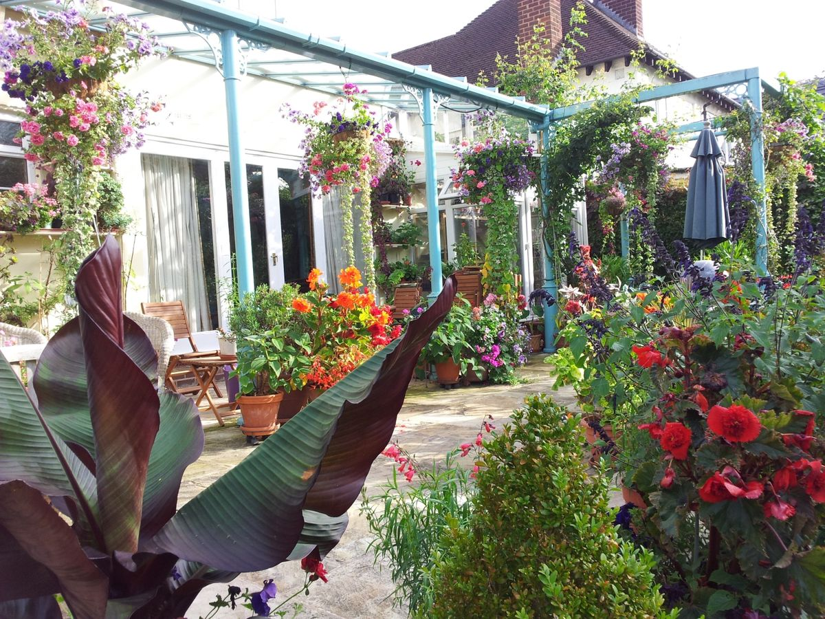 The award-winning garden