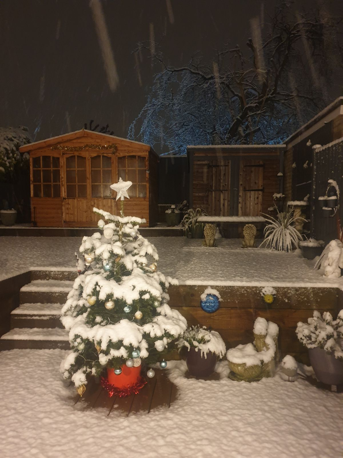 Dee in Wombourne shared this photo of her garden