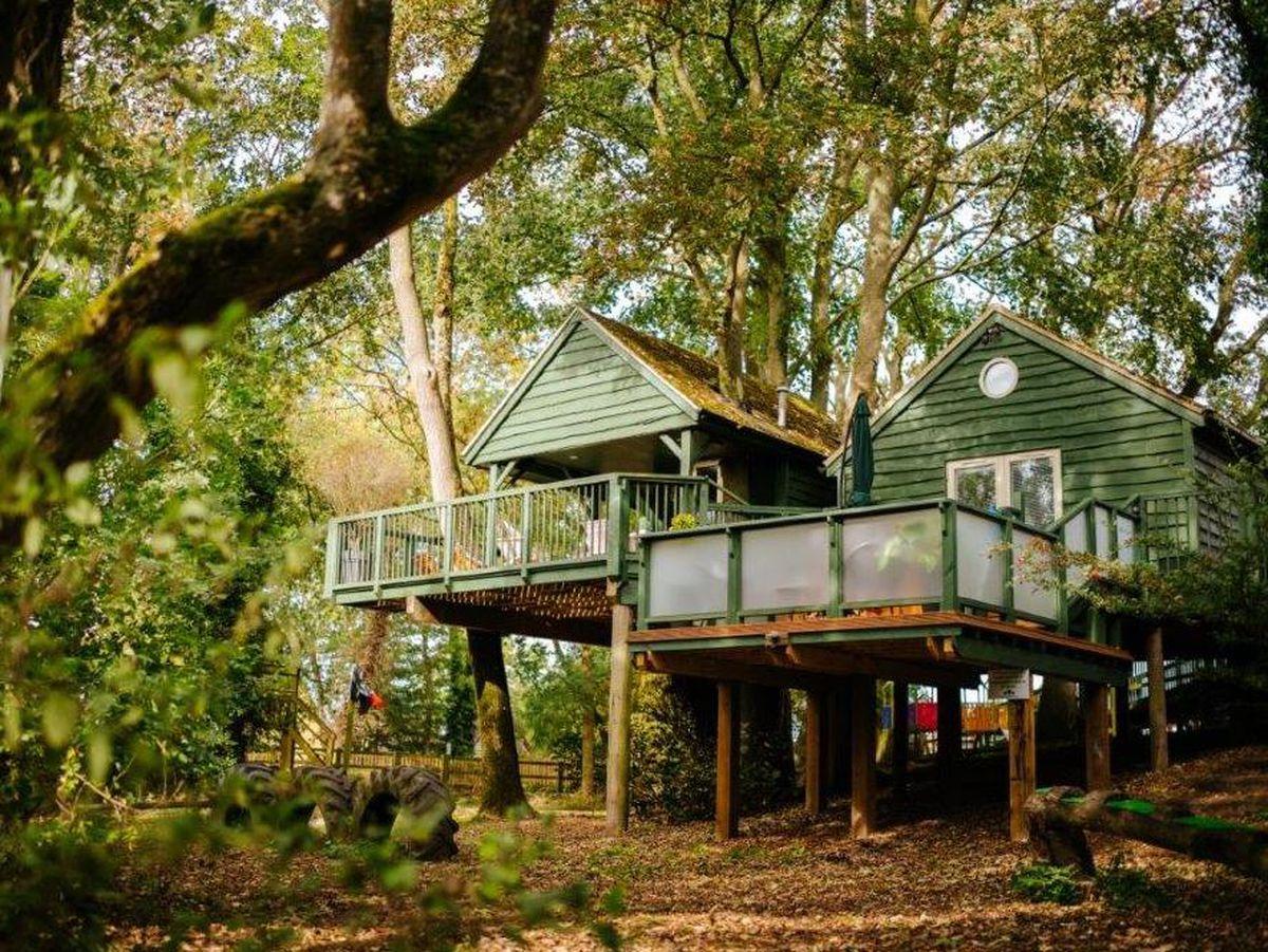 Will's Tree House
