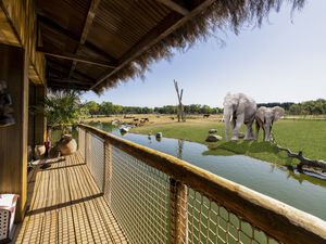 An artist's impression of the view from the balcony of the elephant lodges