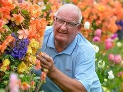 Pensioner's garden best it's ever blooming been
