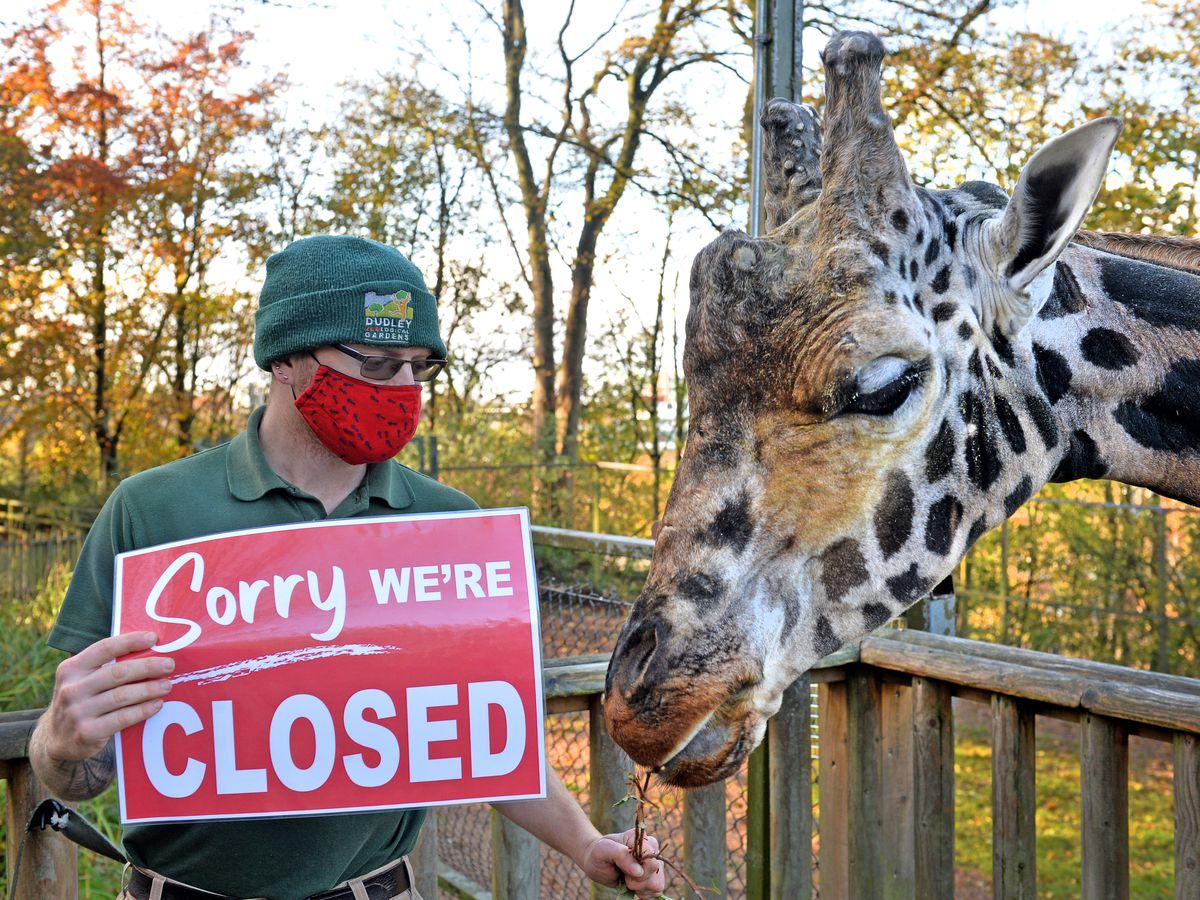 Zookeeper Adam Davey breaking the news to Kubwa the giraffe