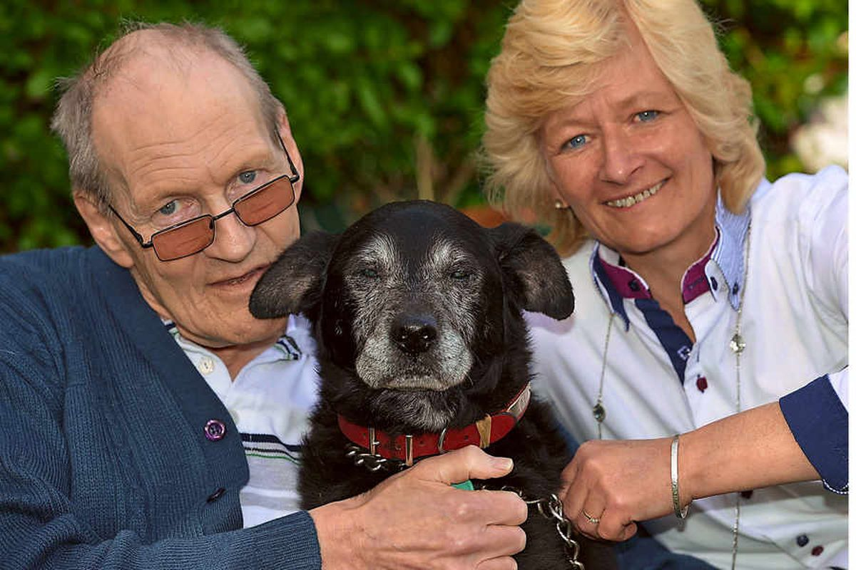 Man and dog saved in rottweiler attack