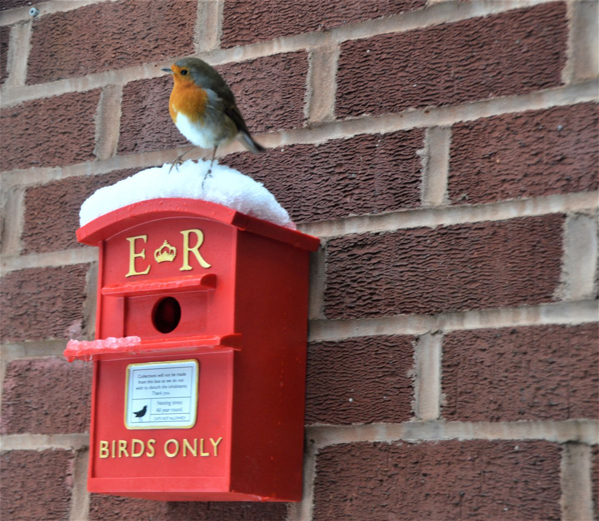 'Adverse weather may delay delivery'. Photo: Diane SImpson