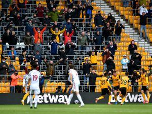 The incident happened at Molineux in May (stock photo)
