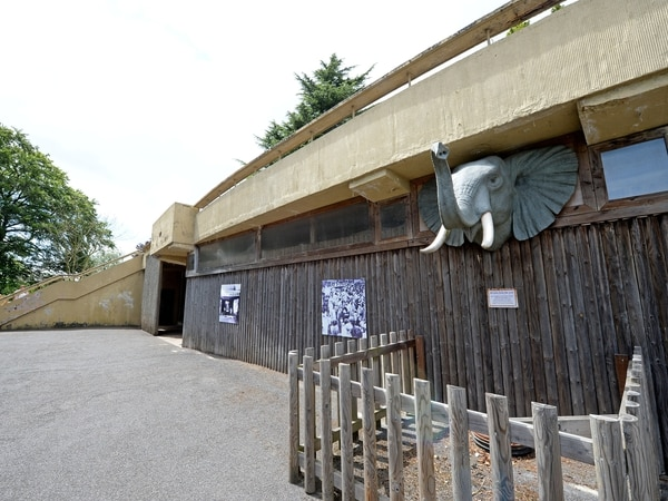 Black Country zoos facing financial uncertainty