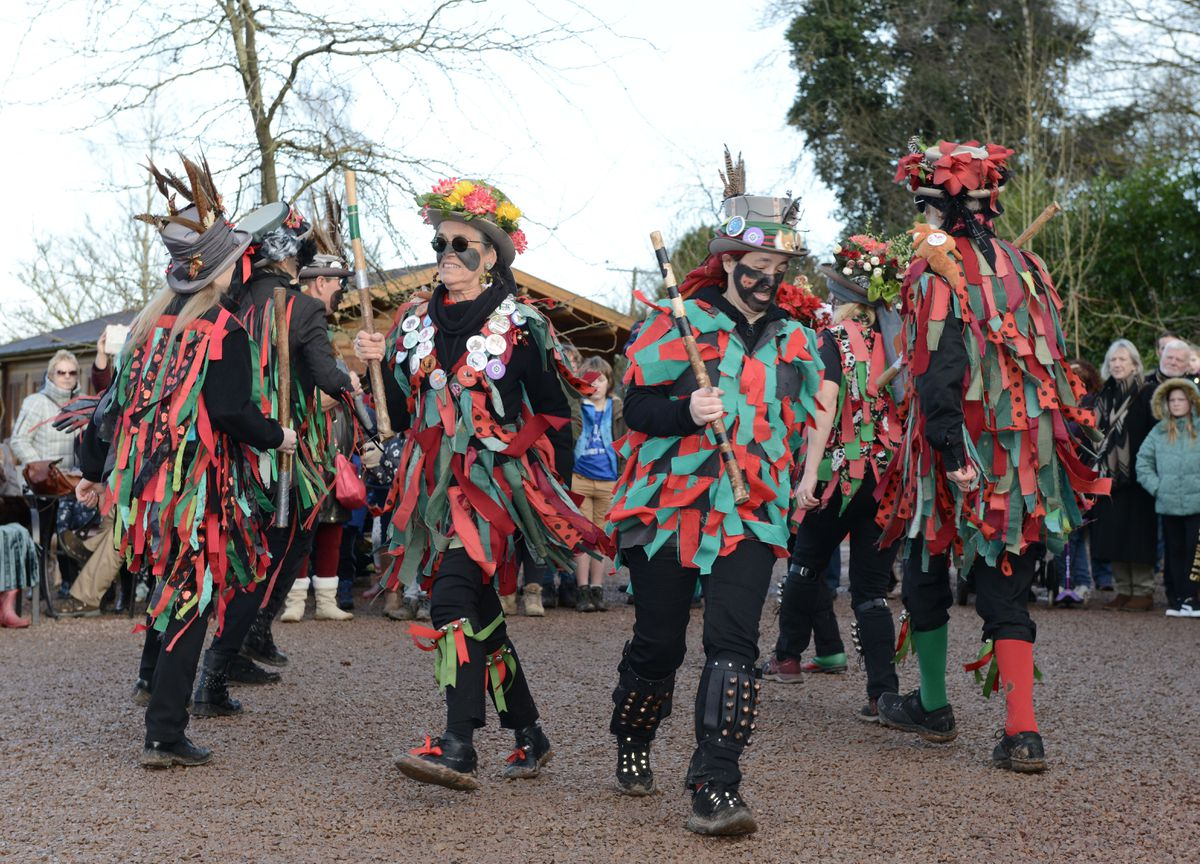 Foxs Morris entertain the crowds at the Winter Wassail at Bodenham Arboretum