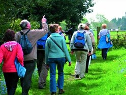 Wolverhampton Walking Festival returns