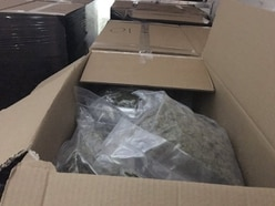 Cannabis with a street value of £1 million seized from van on M6