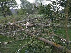 Storm Hannah brings down tree but golf club open day still tees off
