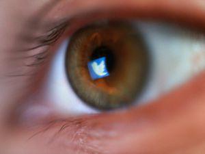 The Twitter logo reflected in an eye