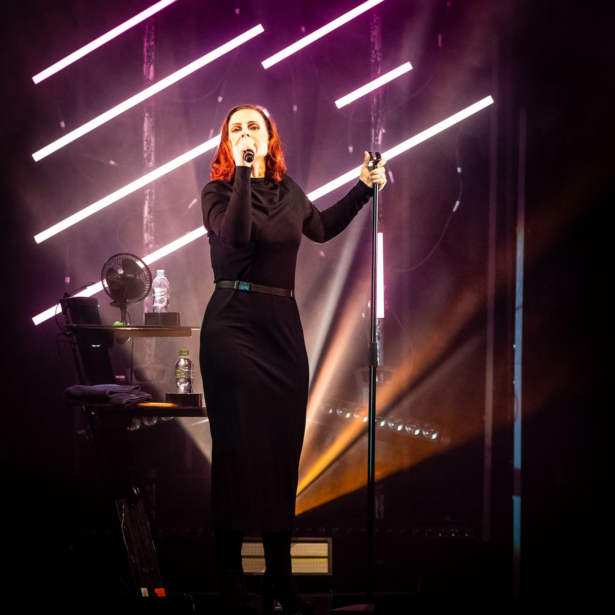 Alison Moyet. Pictures by: Dave Cox