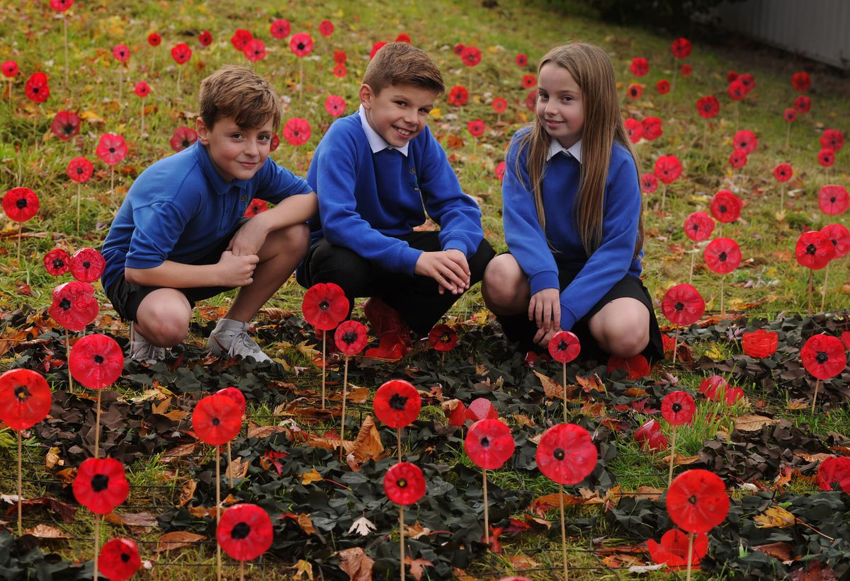 Looking at the poppy display are Gethin Edwards, 10, Ethan Hodgetts, nine, and Millie-Mae Buttrick, nine at Five Ways Primary School in Cannock