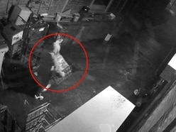 WATCH: Thief snatches 20 bread loaves and hose pipe in shop raid