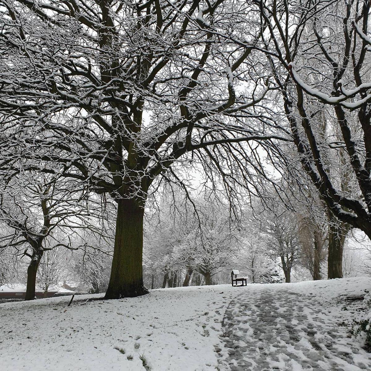 Hickman Park Bilston. Pic: Dawn Wilkes.