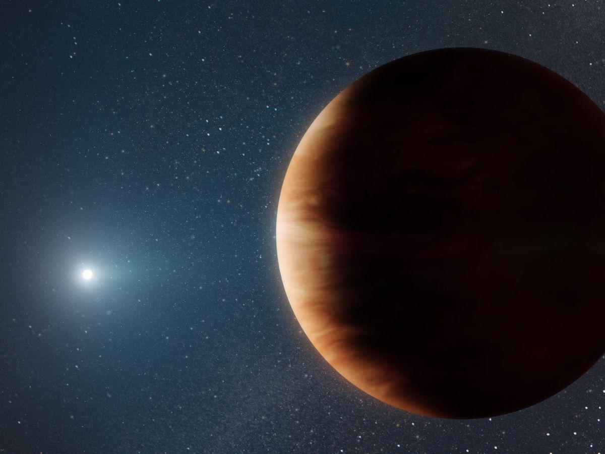 White Dwarf System