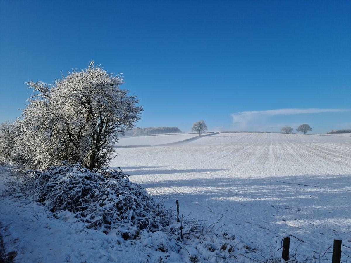 Snow in Stourbridge. Photo: Lynda Potter