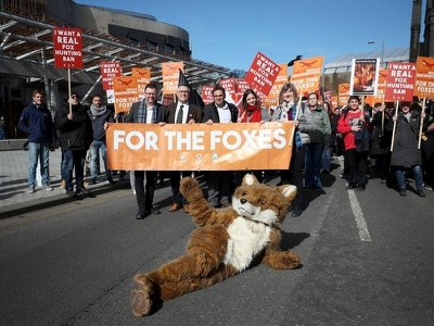 Hundreds join call for fox hunting ban in Scotland