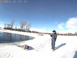 Deer stuck in frozen lake saved by officer with lasso