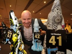 Wolves in Wolves are auctioned off, raising more than £35,000 for charity – video and pictures