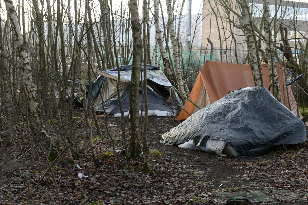Some of the tents that have appeared in a make-shift camp site in woods along the railway track near Stafford Road, Wolverhampton