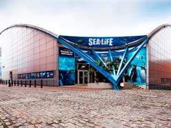 Birmingham's National Sea Life Centre to close for major refurb