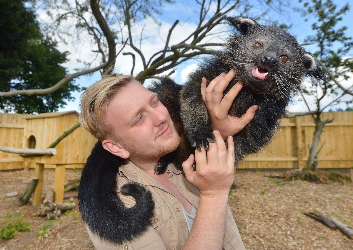 Wild Zoo director Zachary Hollinshead